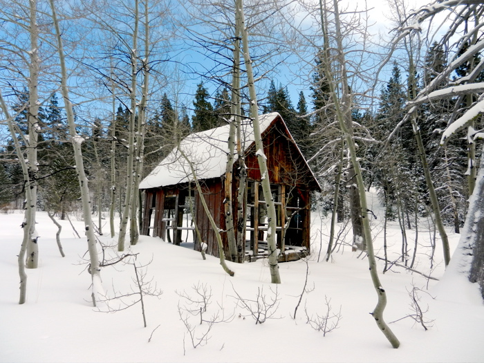 Travel erin zaleski for Lake tahoe winter cabin